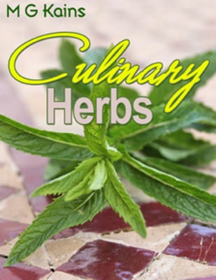 Product picture CULINARY HERBS Ebook- Cultivation, Curing, Uses with Private Label Rights!!